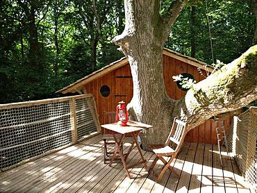 terrasse suspendue arbre